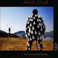 Pink Floyd - Delicate Sound Of Thunder (1988) - 2 CD Box Set