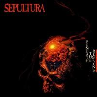 Sepultura - Beneath The Remains (1989)