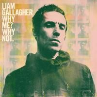 Liam Gallagher - Why Me? Why Not. (2019) (180 Gram Audiophile Vinyl)