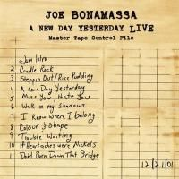 Joe Bonamassa - New Day Yesterday Live (2005)