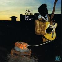 Albert Collins - Ice Pickin' (1978)