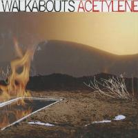 The Walkabouts - Acetylene (2005)