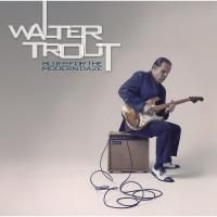 Walter Trout - Blues For The Modern Daze (2012) (180 Gram Audiophile Vinyl) 2 LP
