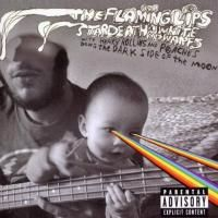 The Flaming Lips And Star Death, White Dwarfs, Henry Rollins And Peaches - The Dark Side Of The Moon (2010)